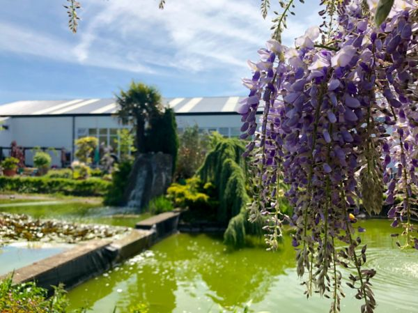 Chepstow Garden Centre